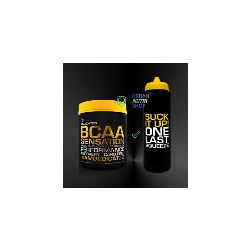 Pack BCAA Sensation Gourde Dedicated